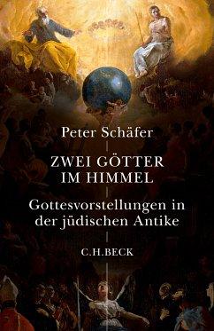 Zwei Götter im Himmel (eBook, ePUB) - Schäfer, Peter