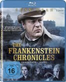 Frankenstein Chronicles - Staffel 1 - 2 Disc Bluray
