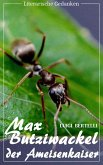 Max Butziwackel, der Ameisenkaiser (Luigi Bertelli) (Literarische Gedanken Edition) (eBook, ePUB)