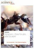 Ameisen (eBook, ePUB)