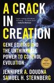 Crack in Creation (eBook, ePUB)