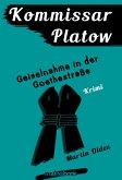 Kommissar Platow, Band 7: Geiselnahme in der Goethestraße (eBook, ePUB)