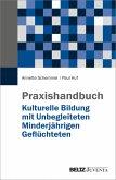 Praxishandbuch Kulturelle Bildung mit Unbegleiteten Minderjährigen Geflüchteten (eBook, PDF)
