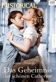 Das Geheimnis der schönen Catherine (eBook, ePUB)
