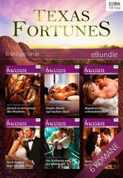 Texas Fortunes - 6-teilige Serie
