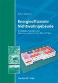 Energieeffiziente Nichtwohngebäude. (eBook, PDF)