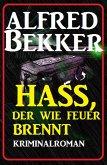 Hass, der wie Feuer brennt: Kriminalroman (eBook, ePUB)
