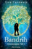 Bandrih (eBook, ePUB)