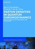 Parton Densities in Quantum Chromodynamics (eBook, ePUB)