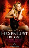 Die HexenLust Trilogie - Wie alles begann   Erotischer Roman (eBook, ePUB)