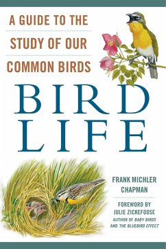 Bird Life: A Guide to the Study of Our Common B...