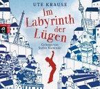 Im Labyrinth der Lügen, 4 Audio-CDs (Mängelexemplar)