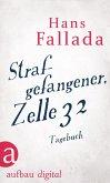 Strafgefangener, Zelle 32 (eBook, ePUB)