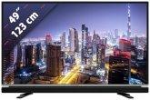 Grundig 49 VLE 6625 123 cm (49 Zoll) Fernseher (Full HD)