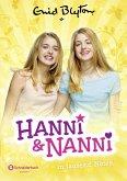 Hanni und Nanni in tausend Nöten / Hanni und Nanni Bd.8 (Mängelexemplar)