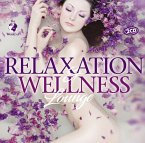 Relaxation & Wellness Lounge