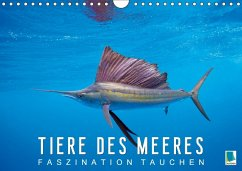 Tiere des Meeres: Faszination Tauchen (Wandkalender 2018 DIN A4 quer)