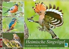 9783665731069 - CALVENDO: Heimische Singvögel (Wandkalender 2018 DIN A3 quer) - Libro