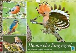 9783665731052 - CALVENDO: Heimische Singvögel (Wandkalender 2018 DIN A4 quer) - كتاب