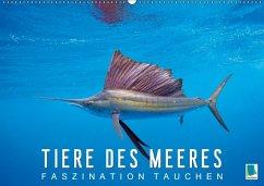 Tiere des Meeres: Faszination Tauchen (Wandkalender 2018 DIN A2 quer)