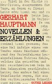 Novellen und Erzählungen (eBook, ePUB)