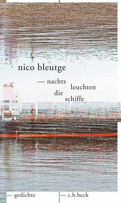 nachts leuchten die schiffe (eBook, ePUB) - Bleutge, Nico
