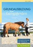Grundausbildung von Gangpferden (eBook, ePUB)