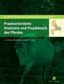 Praxisorientierte Anatomie und Propädeutik des Pferdes (eBook, PDF)