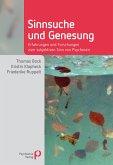 Sinnsuche und Genesung (eBook, PDF)