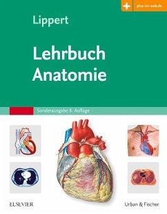 Lehrbuch Anatomie - Lippert, Herbert