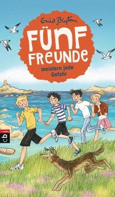 Fünf Freunde meistern jede Gefahr (eBook, ePUB) - Blyton, Enid