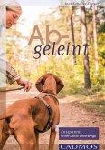 Abgeleint (eBook, ePUB)