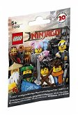 LEGO® Minifigures 71019 Ninjago Movie (sortiert)