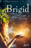 Brigid (eBook, ePUB)