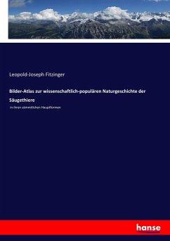 Bilder-Atlas zur wissenschaftlich-populären Naturgeschichte der Säugethiere - Fitzinger, Leopold Joseph