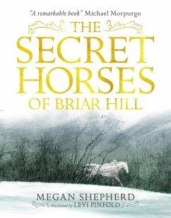 The Secret Horses of Briar Hill - Shepherd, Megan