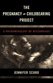 The Pregnancy [does-not-equal] Childbearing Project (eBook, ePUB)