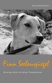 Finn Seelenspiegel (eBook, ePUB)