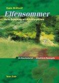 Elfensommer (eBook, ePUB)