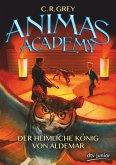 Der heimliche König von Aldemar / Animas Academy Bd.2