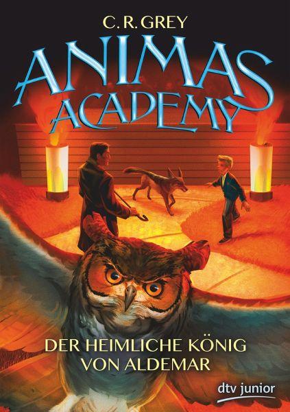 Buch-Reihe Animas Academy