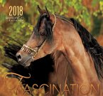 Fascination 2018