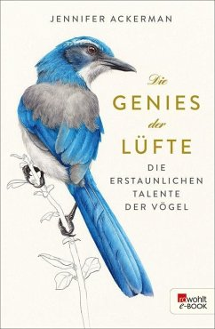 Die Genies der Lüfte (eBook, ePUB) - Ackerman, Jennifer