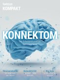 Spektrum Kompakt - Das Konnektom (eBook, PDF)