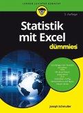 Statistik mit Excel für Dummies (eBook, ePUB)