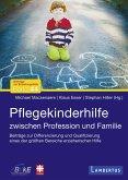 Pflegekinderhilfe (eBook, PDF)
