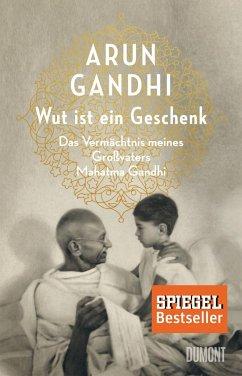 Wut ist ein Geschenk - Gandhi, Arun