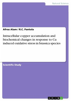 Intracellular copper accumulation and biochemical changes in response to Cu induced oxidative stress in brassica species (eBook, ePUB)