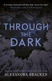 Through the Dark (eBook, ePUB)
