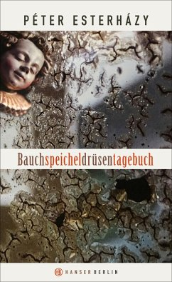 Bauchspeicheldrüsentagebuch (eBook, ePUB) - Esterházy, Péter